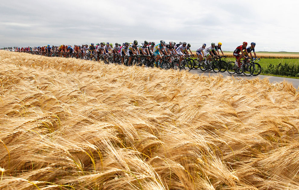 Tour de France 2012 cyclists between Vise and Tournai (Reuters/Stephane Mahe)