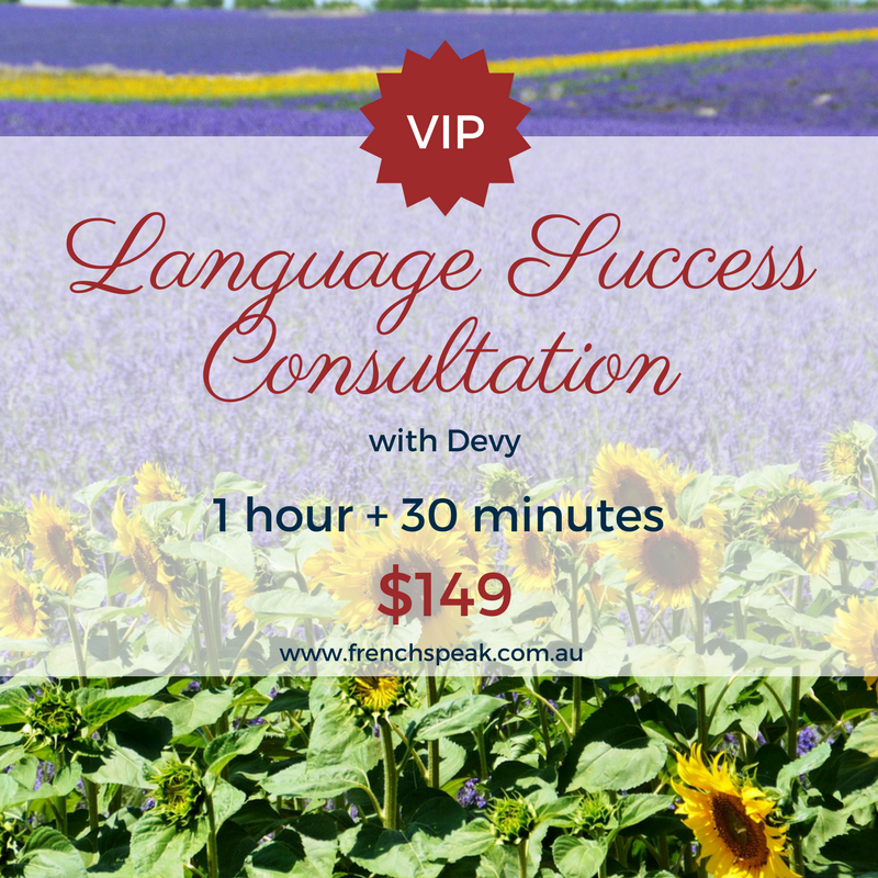Language Success Consultation