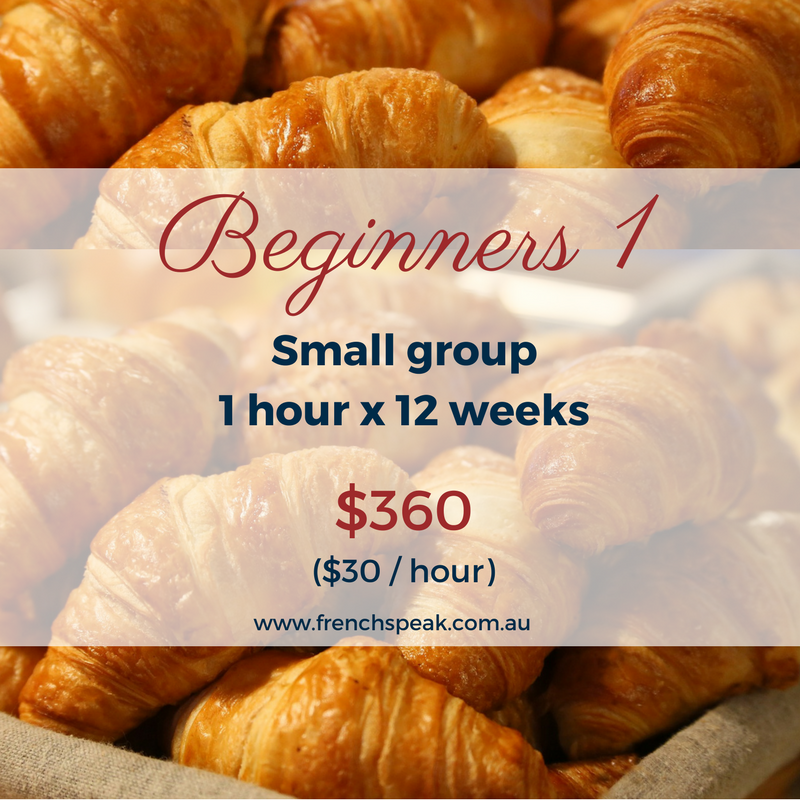 Beginners 1 lessons 12-week course
